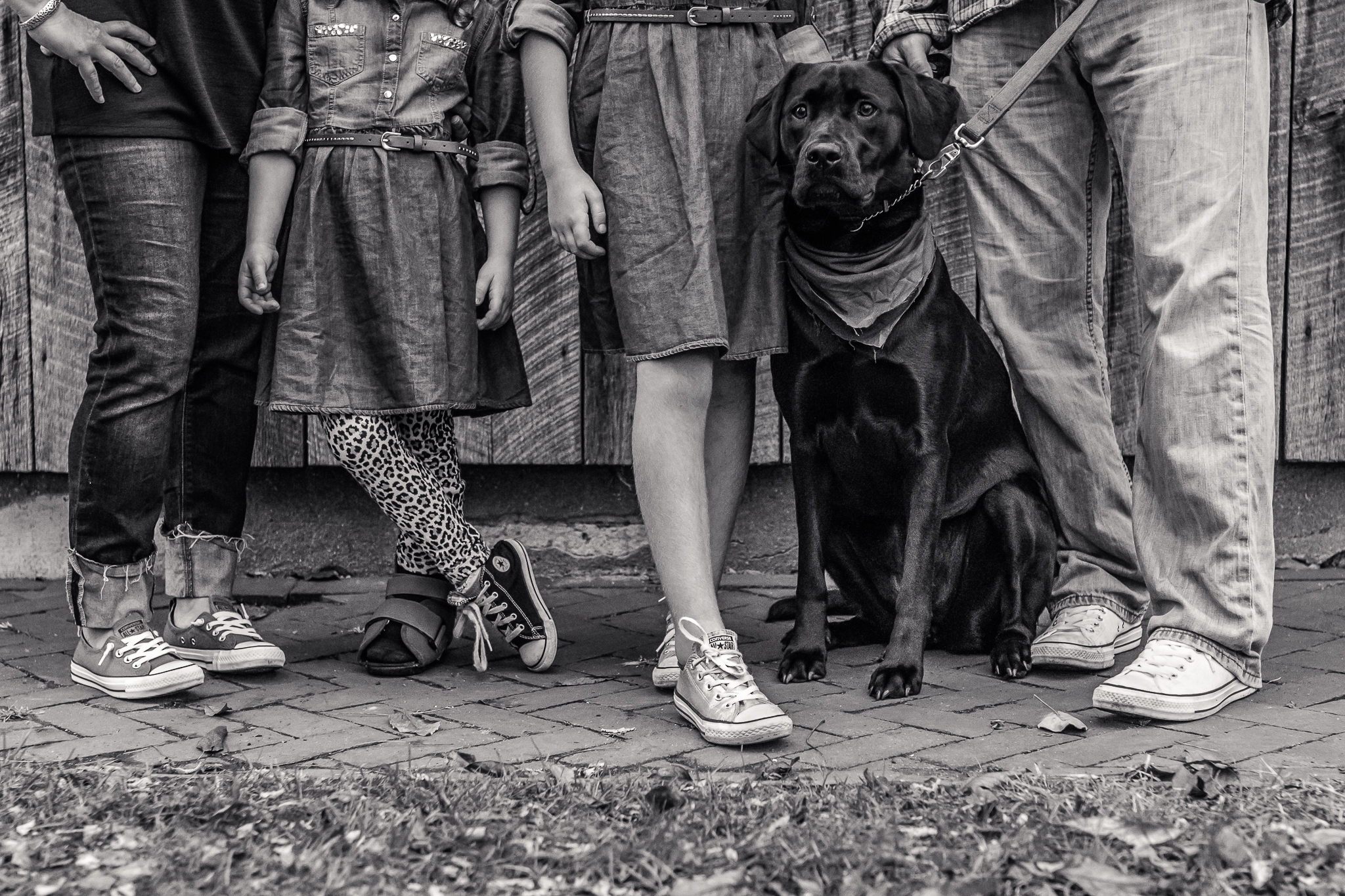 New Jersey Family Photographer, Nancy Elizabeth Photography, Family in Converse Sneakers with Dog